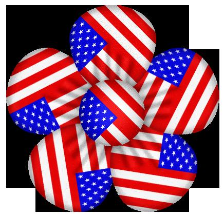 Usa flag flower.