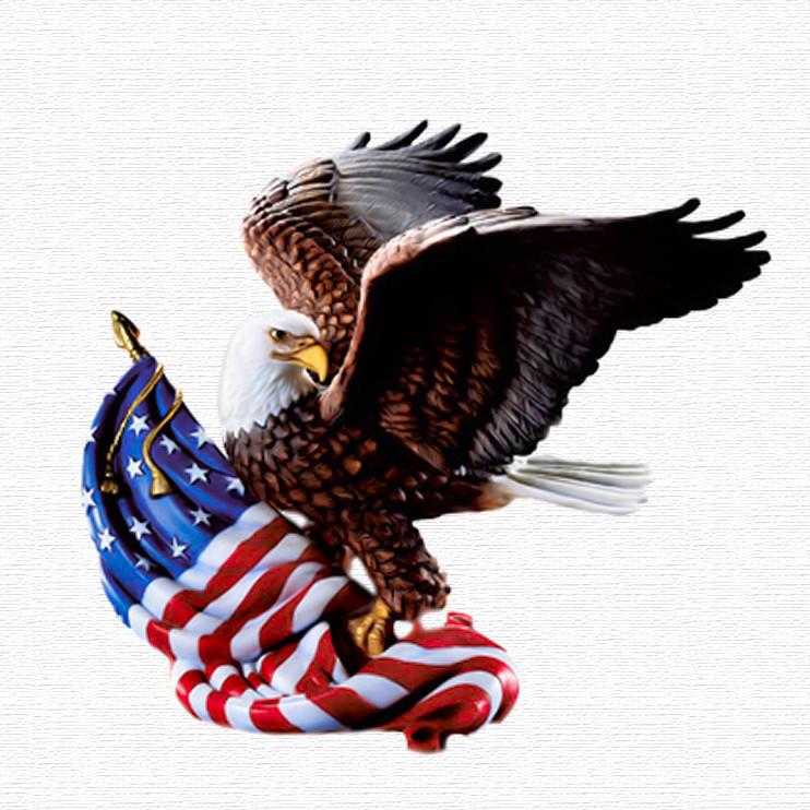 4th july eagle.