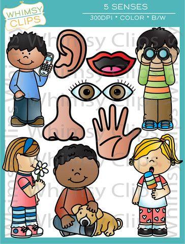 5 senses clipart toddler
