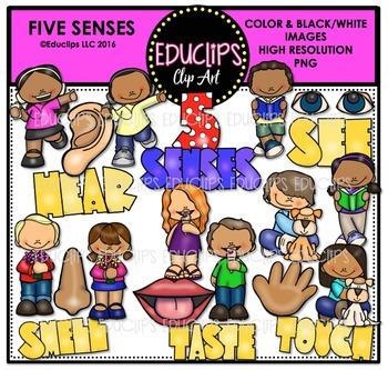 5 Senses Clipart Worksheets