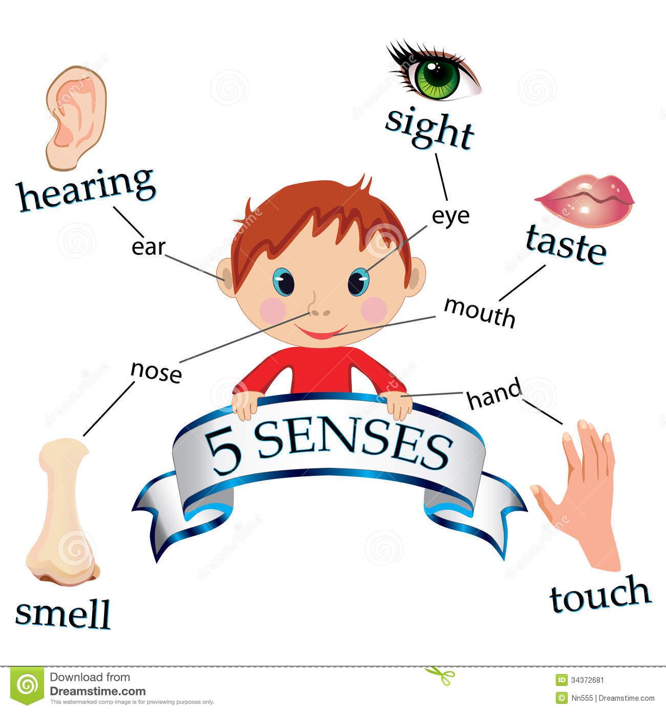 Senses clipart clipartlook.