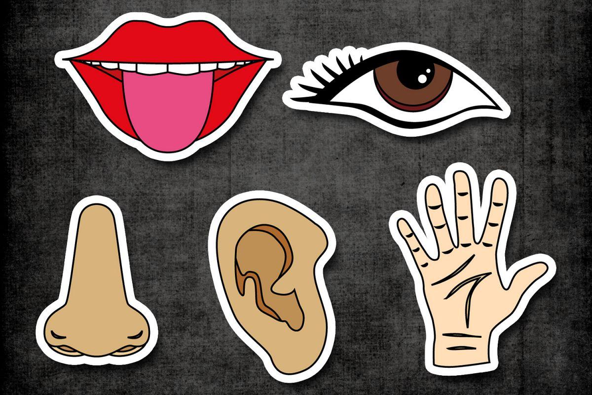 Tongue senses transparent.