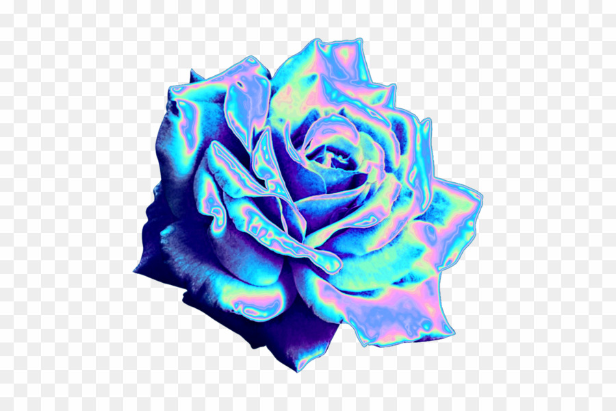 Blue Flower Aesthetic PNG Blue Rose Clipart download