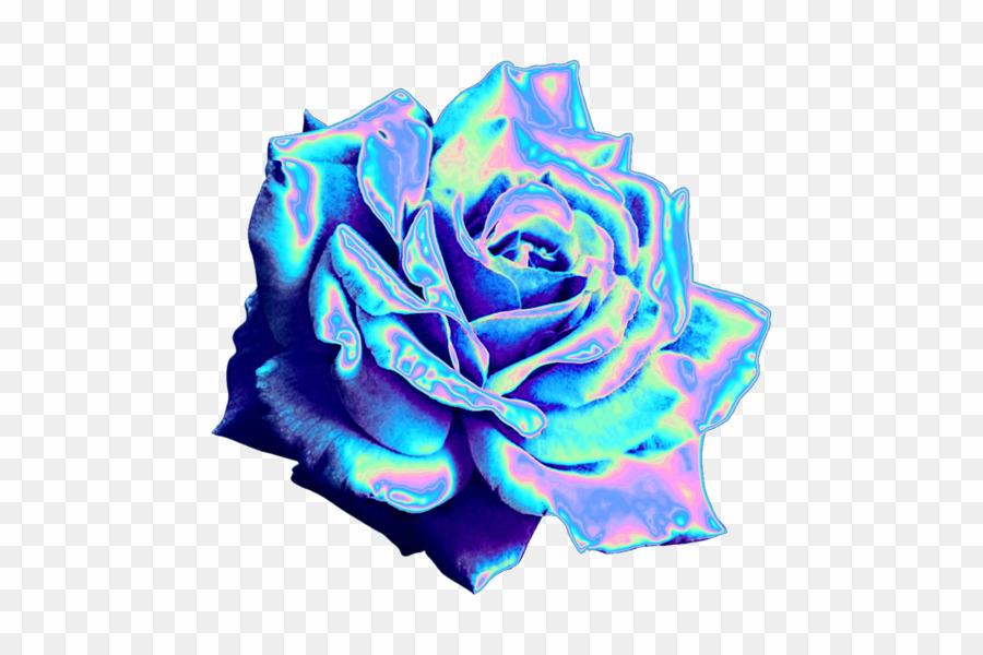 Blue flower aesthetic.