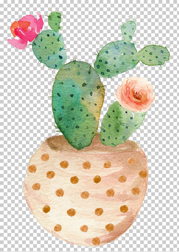 Succulent plant watercolor.