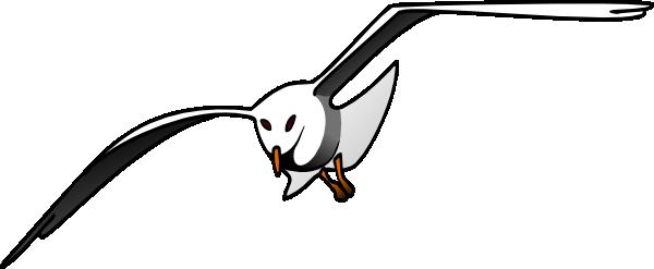 Albatross clipart clipart.