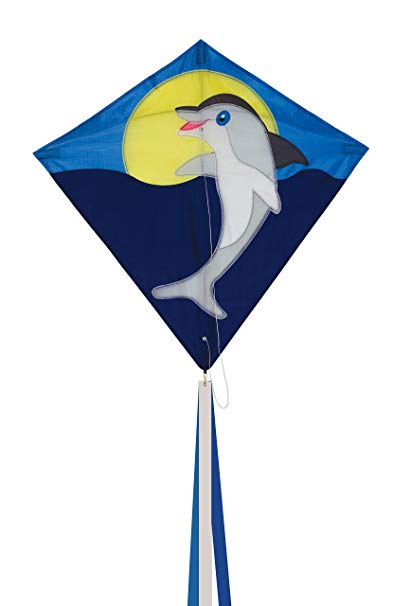 The breeze dolphin.