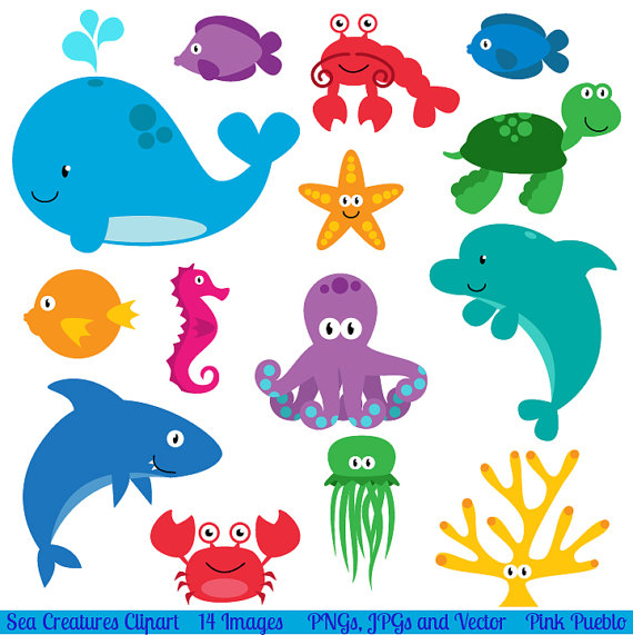 Ocean animal clipart.