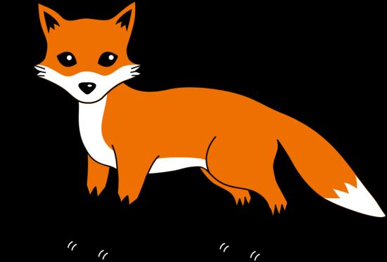 Cute red fox.