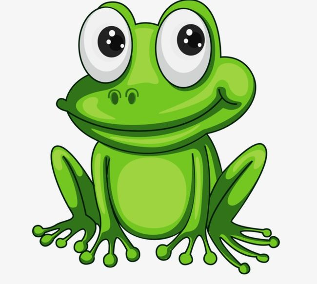 Cartoon frog png.