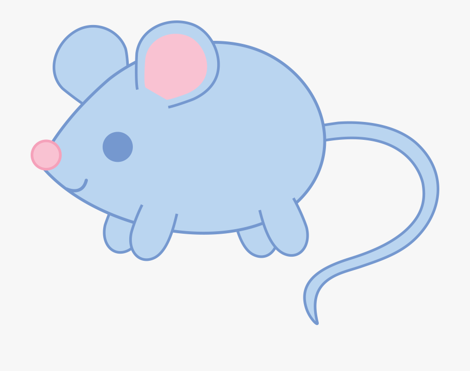 Ideas cute rat.