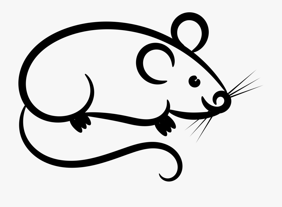 Rat mouse clipart.