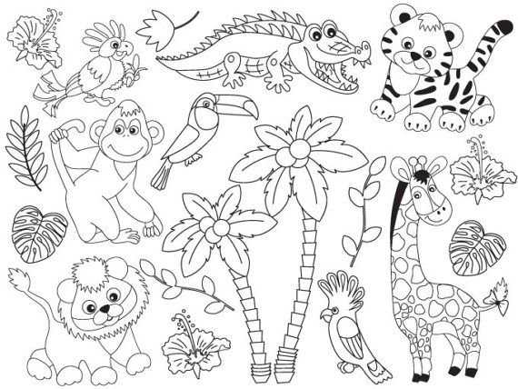 Animals black and white clipart safari pictures on ...