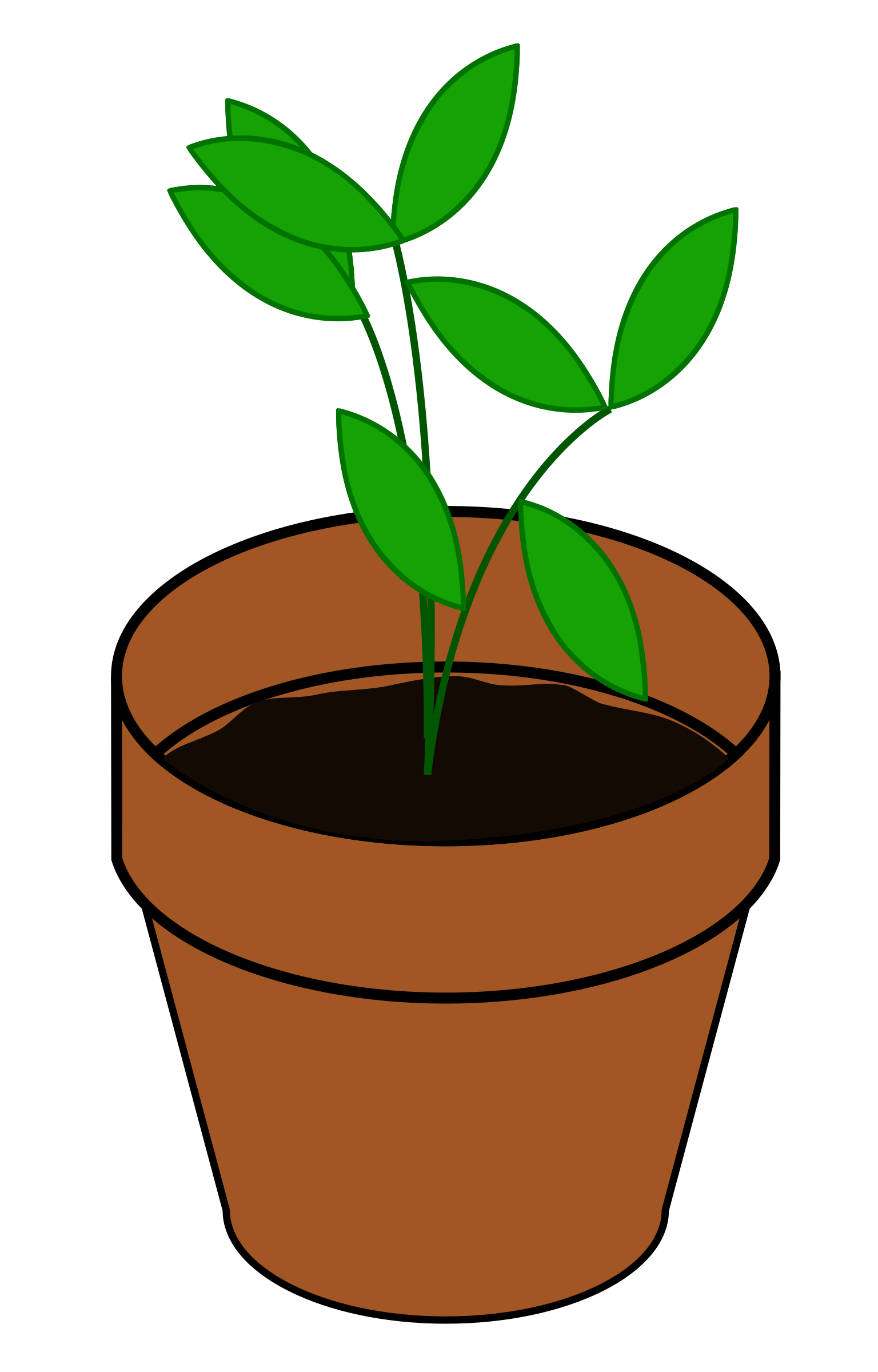 Cute plant clipart clipart images gallery for free download