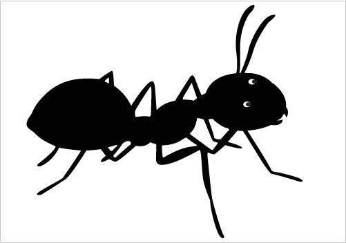 Awesome ant silhouette.