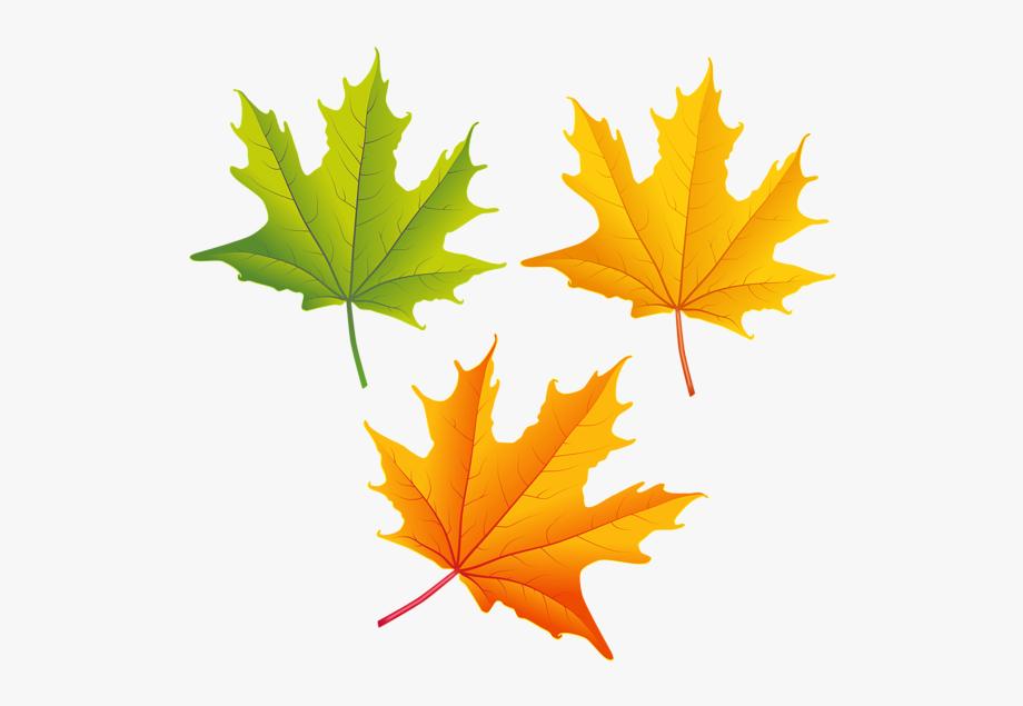 Clipart images autumn.