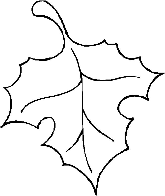 Leaf outline crafty.