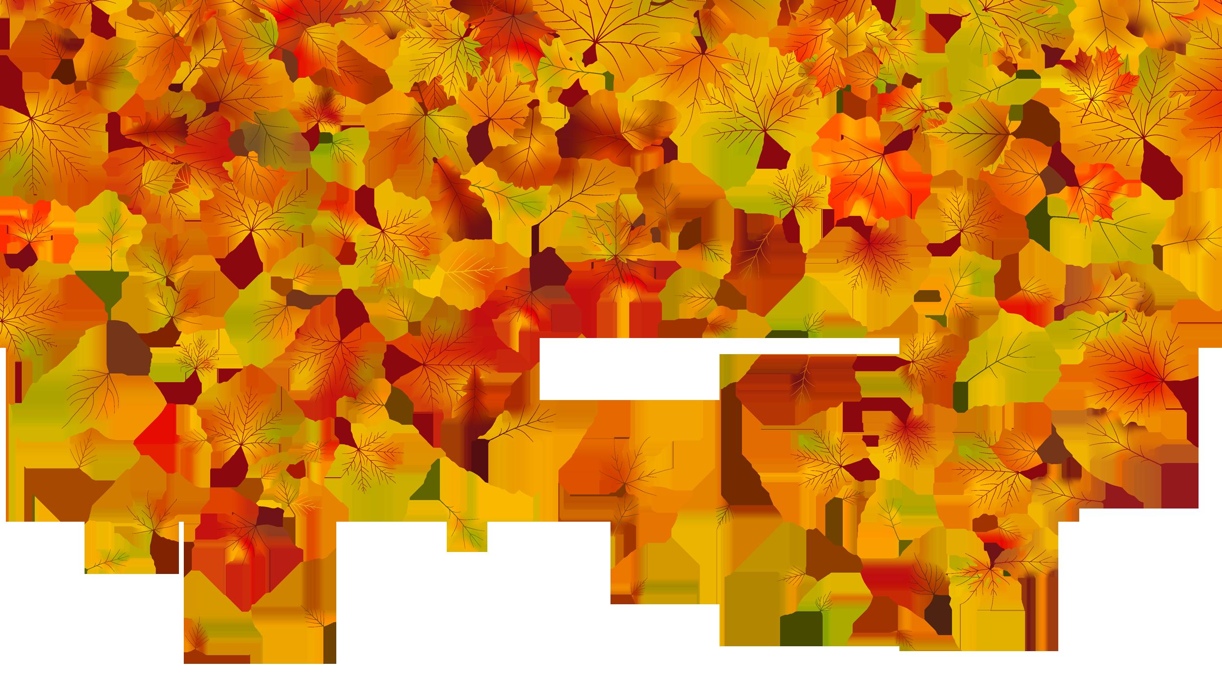 Autumn leaf color.