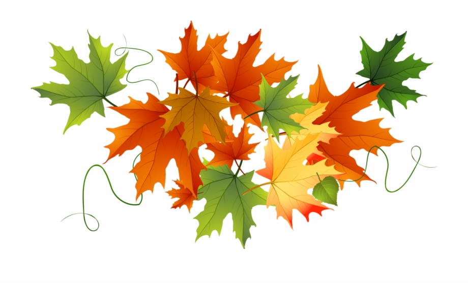 Free fall leaf.