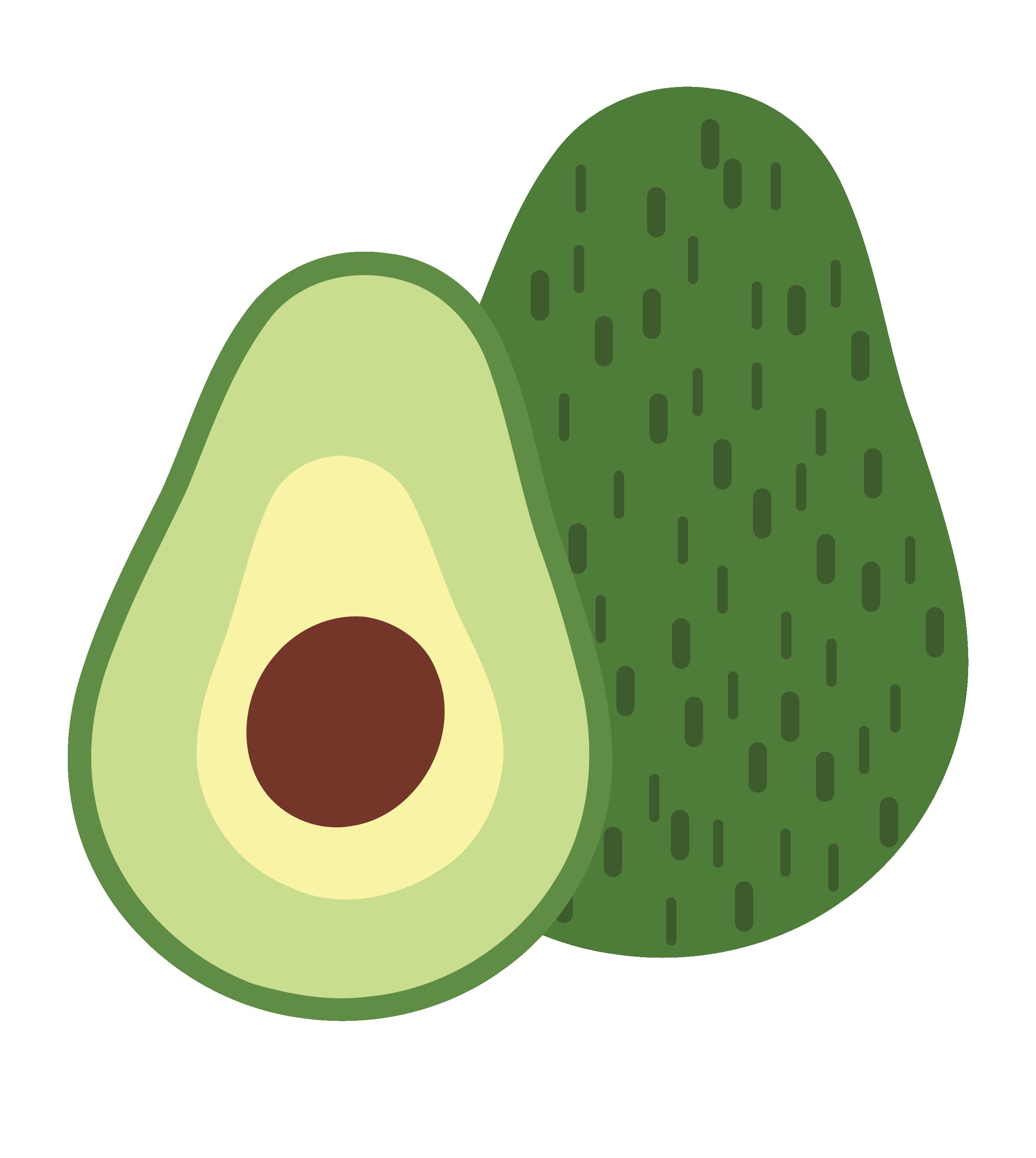 Avocado vector clipart.