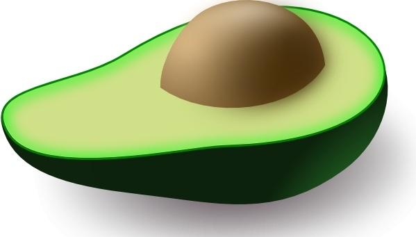 Avocado clipart vector.