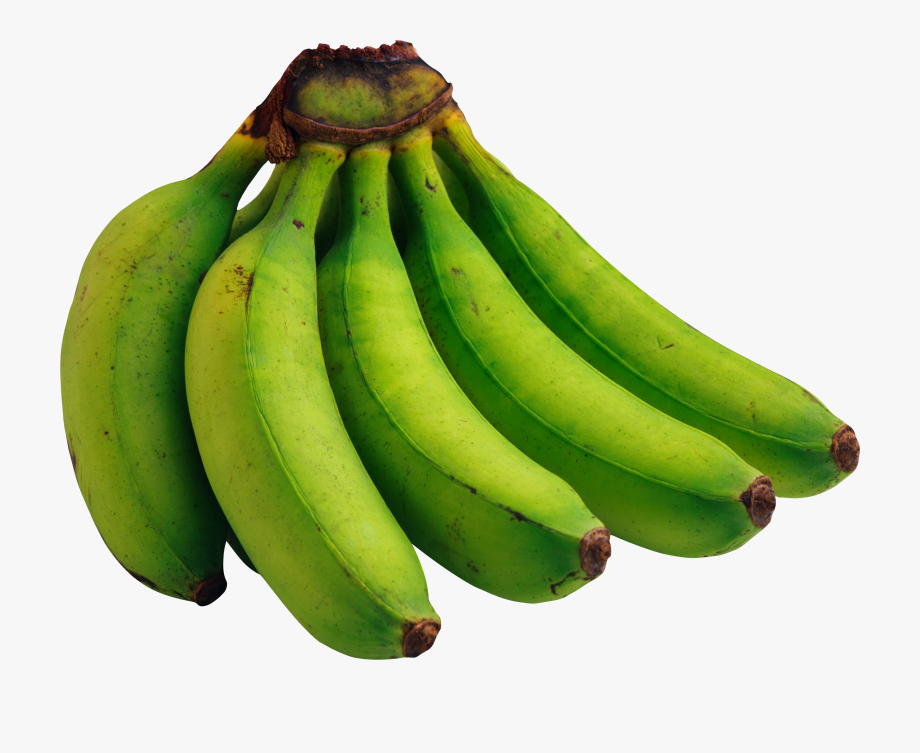 Banana clipart green.