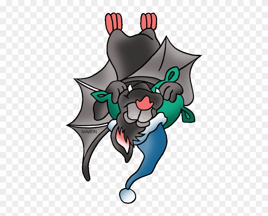 Sleeping bat clip.