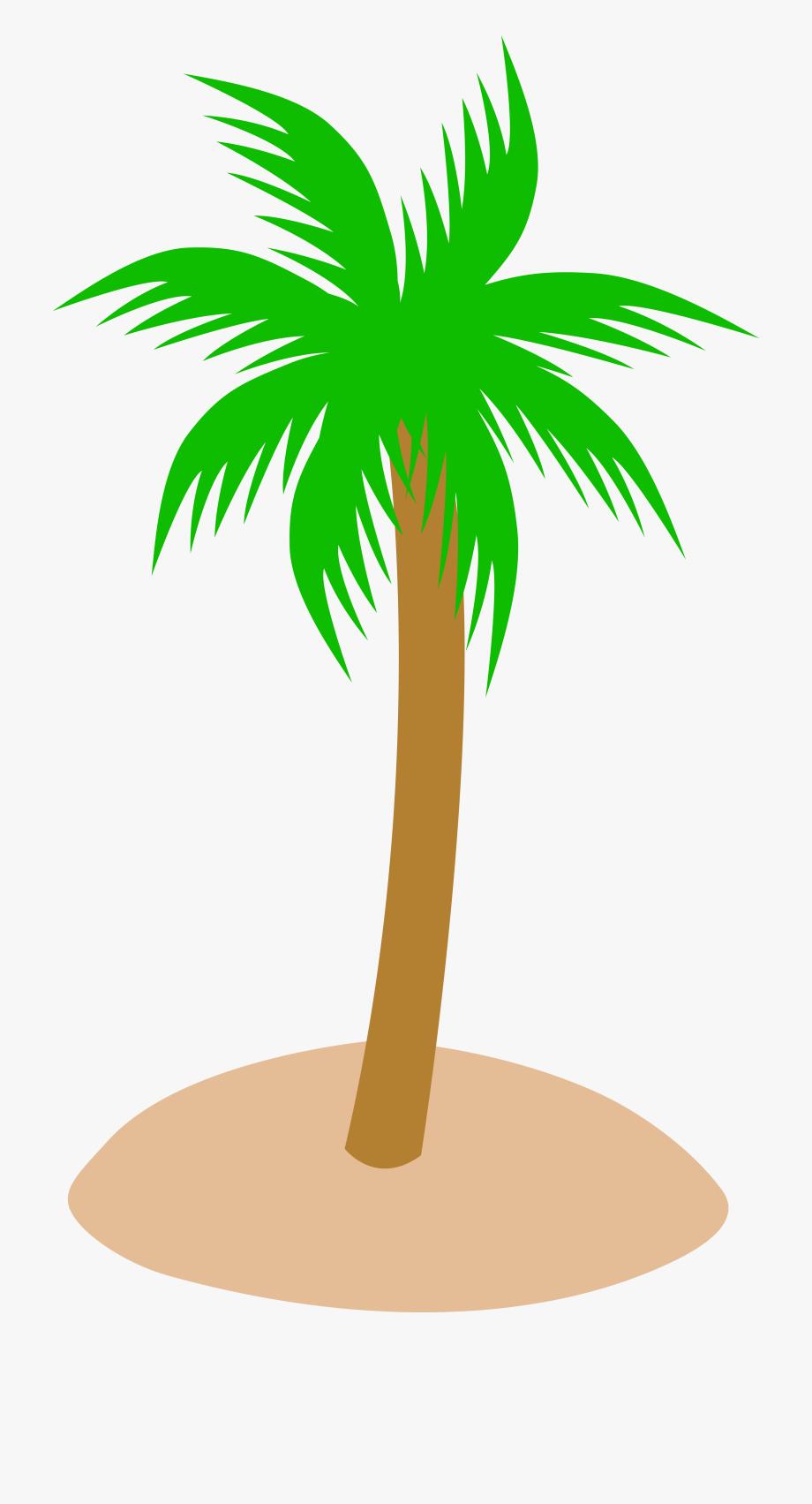 Palm tree sunset.