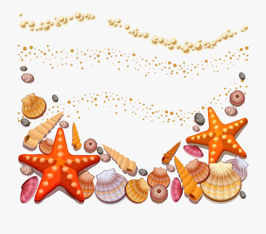 beach clipart seashell