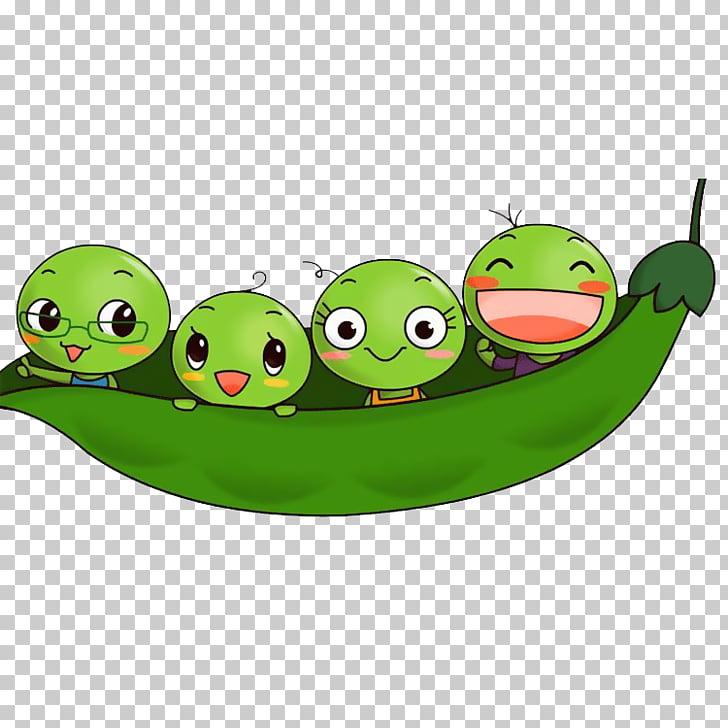 Pea bean child.