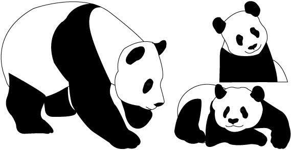 Cute panda bear.