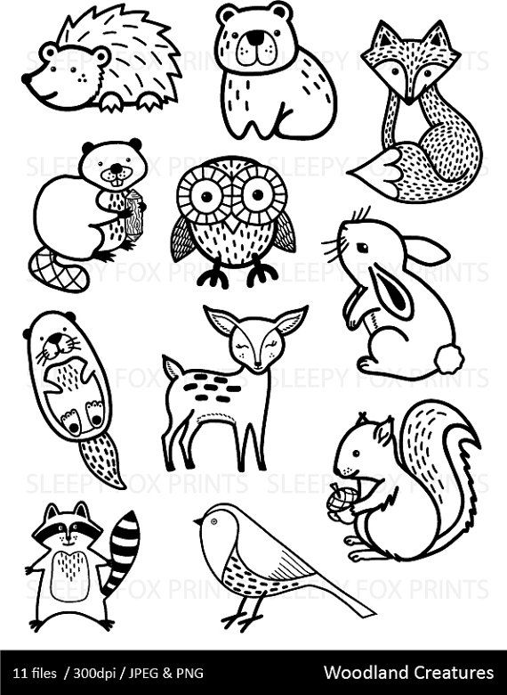 Forest clipart black and white animal. Pin on t a