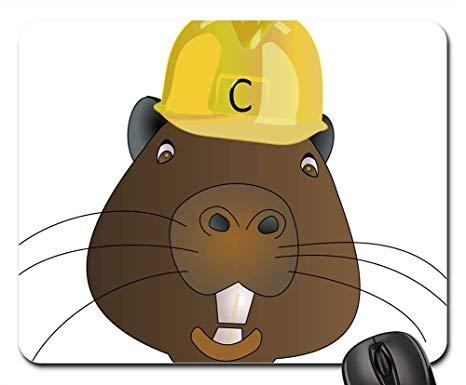 Beaver clipart castor. Amazon com mouse pads