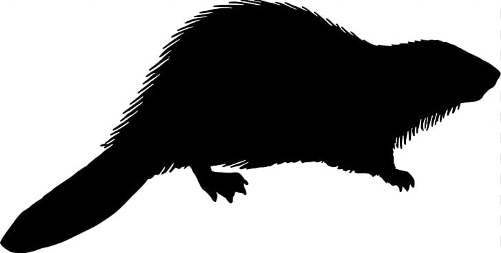 Beaver silhouette png.