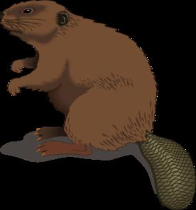 Beaver clipart silhouette.