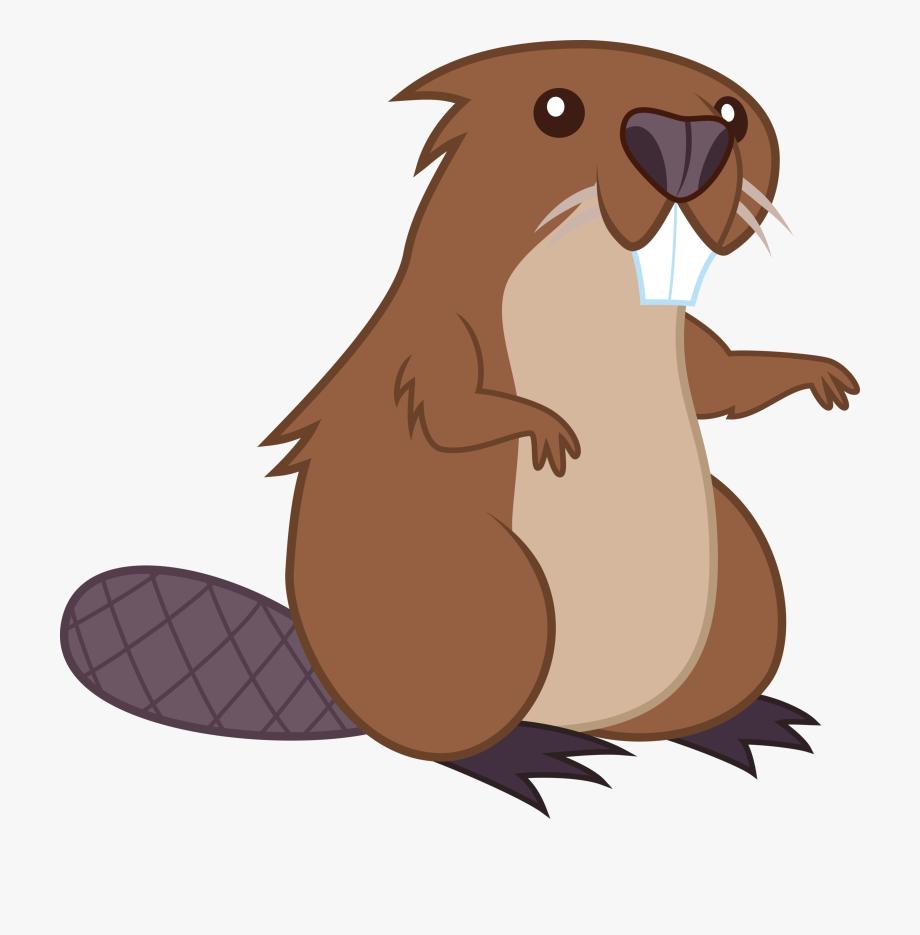 Beaver cartoon clip.