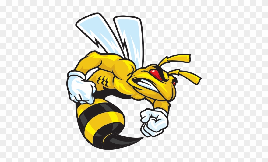 Bee clipart angry. Bee clipart angry. Deadth hornet bees png