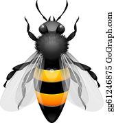 Honey bee clip.