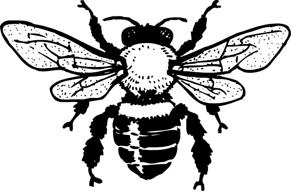 Bee clipart vector. Bee clipart vector. Honey clip art free