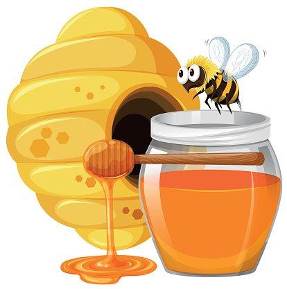 biene clipart honig