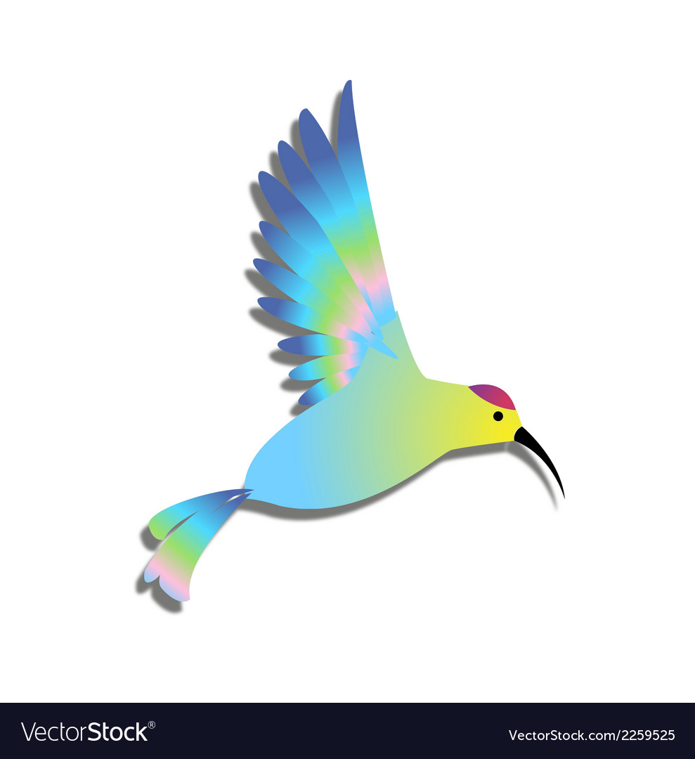 free bird clipart colorful
