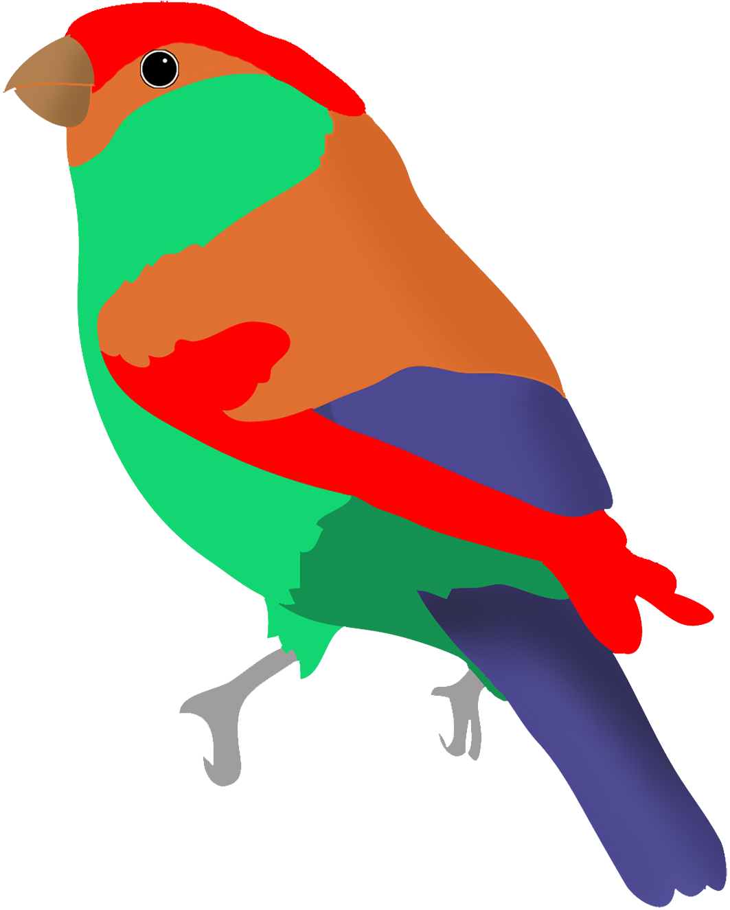 Colorful drawings birds.