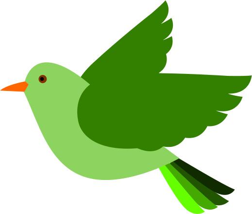 Free birds flying.