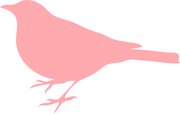 Light pink bird.