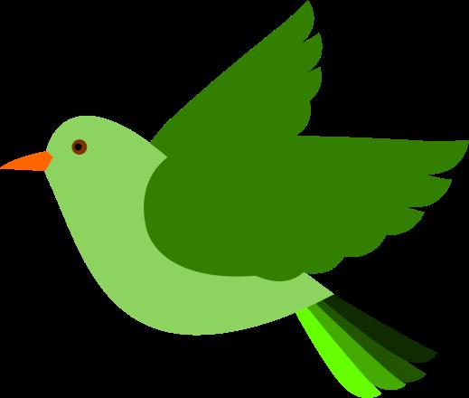 Bird clipart transparent.