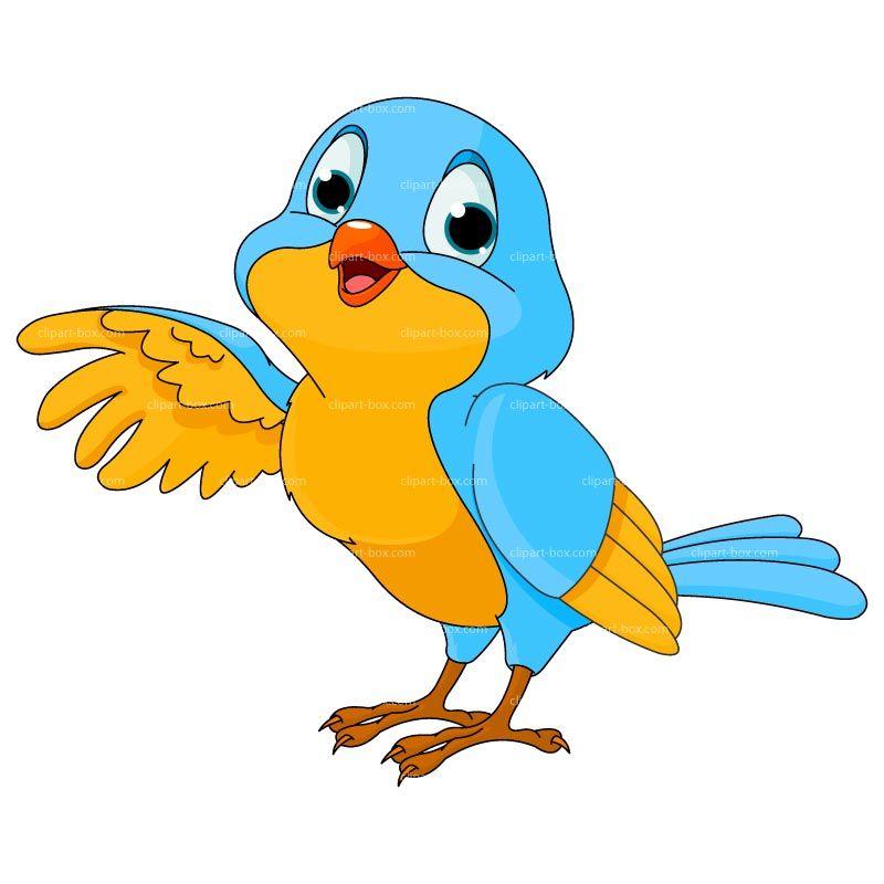 bird clipart vector