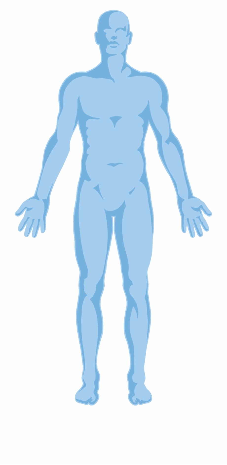 Body body outline.