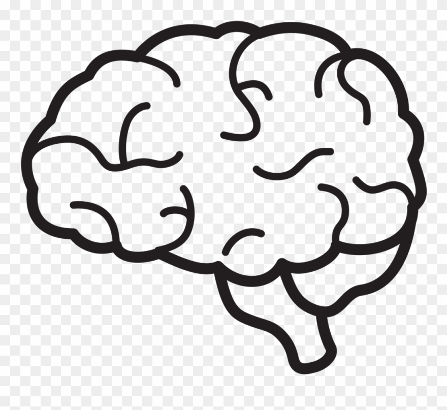 Collection brain clipart.