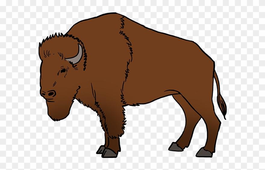 buffalo clipart cute