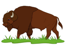 Buffalo clipart animated. Bison transparent free for